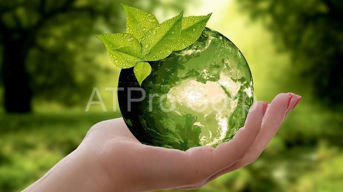 Ô nhiễm môi trường sống đang trở thành một vấn nạn đe dọa đến cuộc sống của con người và cấp bách cần được giải quyết hiện nay