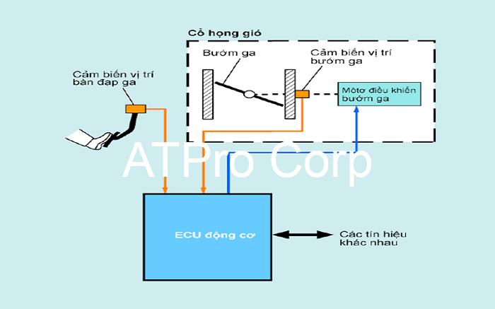 Mô hình cơ bản của một hệ thống điều khiển điện tử